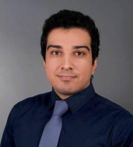 Hami Hadizad, Wise Business Group